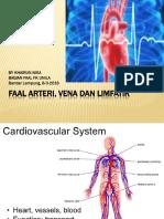 Arteri, Vena Dan Limfatik