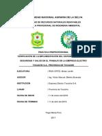 Verificación de La Implementación Del Sistema de Gestión de Seguridad y Salud en El Trabajo en La Empresa Electro
