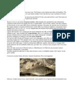 50 sfumature di pesce rosso.docx