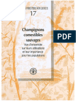 Champignons Comestibles Sauvages