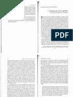 Tema 2  Aguilar, ElderCobb y Compl-30-43