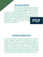 Acción de Amparo y Habeas Data