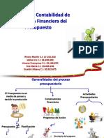 Ejecucion Presupuestaria Ingresos Gubernamental.pptx