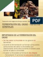 Fermentación Del Cacao – Aspectos Generales