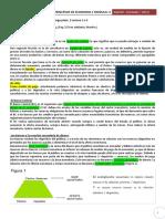 268306591-Principios-de-Economia-Resumen-m4.pdf