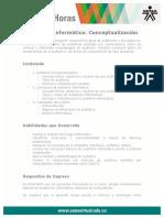 auditoria_informatica_conceptualizacion.pdf