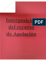Interposición Recurso Apelación