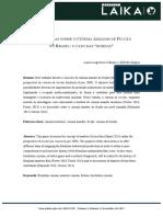 PERSPECTIVAS-SOBRE-O-CINEMA-AMADOR-DE-FICÇÃO-NO-BRASIL1