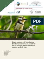 Audubon_-_Digital Estudio 2016 mucho más que palomas[1].pdf