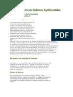 Establecimiento de Sistemas Agroforestales