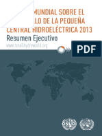 WSHPDR 2013 Executive Summary Spanish