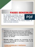 4 FASES SENSIBLES