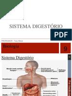 Biologia Sist Digest e Resp