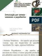 Animais+peçonhentos+31+maio