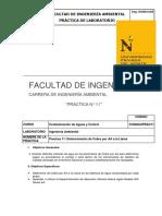 Practica de Laboratorio N11