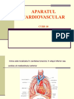 Aparatul Cardiovascular Curs 10