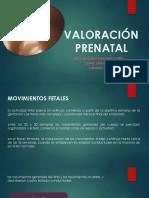 Valoración Prenatal