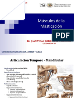 6. Musculos de La Masticacion