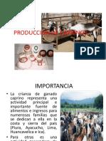 Sistemas de Produccion Caprina 2012