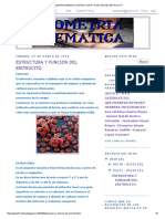 BIOMETRIA HEMATICA_ ESTRUCTURA Y FUNCION DEL ERITROCITO.pdf