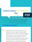 Antibody Design and Conjugation