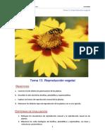 BG Tema 13B_Reproducción Vegetal