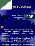 Db210 2007 T02 Digestao Absorcao