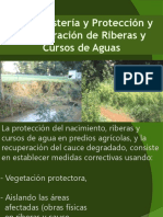Proteccion riberas2012