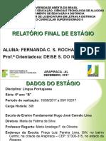 Relatório Fernanda