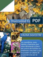 3. Diversidad Faunistica Venezolana