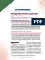 Bacillus Subtilis Doc7