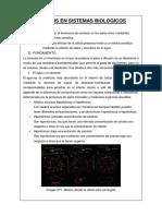 Osmosis en Sistemas Biologicos