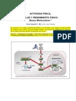 12-Ejercicio Salud y Rendimiento Fisico Bases Moleculares 2011 MODULO 5