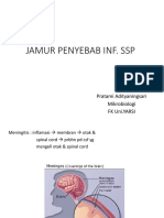 8.4. Jamur Penyebab Infeksi SSP