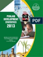 Dev-2013.pdf