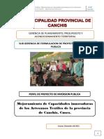 PIP Artesania