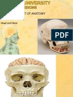 Skull copy.ppt