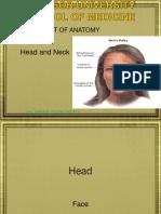 Head 2.ppt
