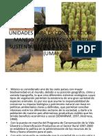 Unidades Para La Conservación, Manejo y Aprovechamiento