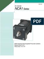 NCA1_N304-EX