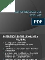 Neurofisiologia Del Lenguaje