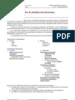 Pruebas de Identificacion Bacteriana 1[1]