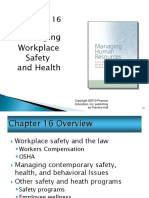 Managing  Workplace Safety and Health
