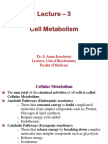 3 - Cell Metabolism