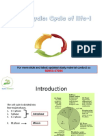 Cell Cycle Ppt