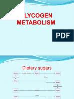 12 - Glycogen Metabolism
