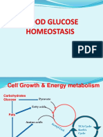 14 - Blood Glucose Homeostasis