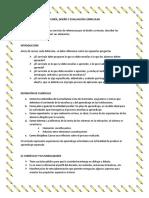 Resumen de Curriculum