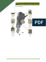 Bosques Nativos Argentinos (2)
