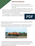 Tranporte Forestal en Peru